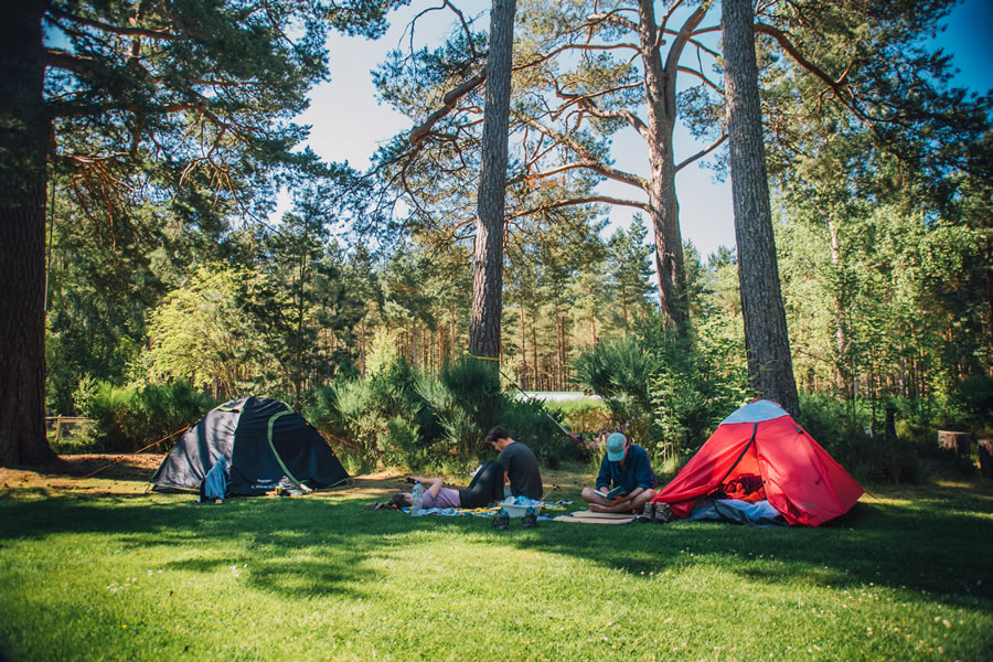 The Lazy Duck Campsite, Nethy bridge, near Aviemore, Cairngorms National Park, Scotland