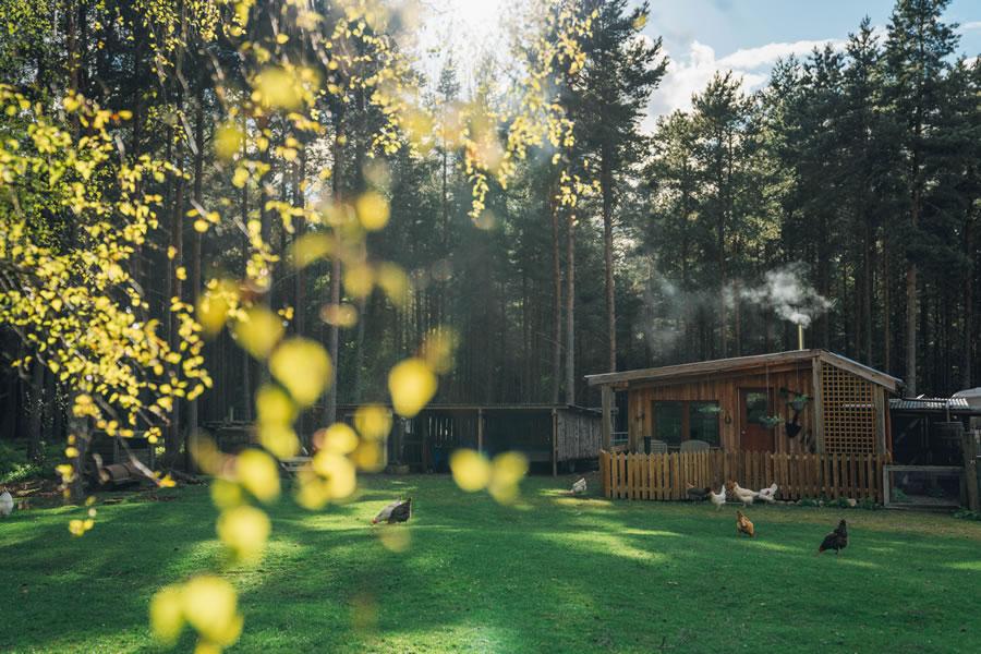 The Homestead eco cabin, Nethy bridge, near Aviemore, Cairngorms National Park, Scotland