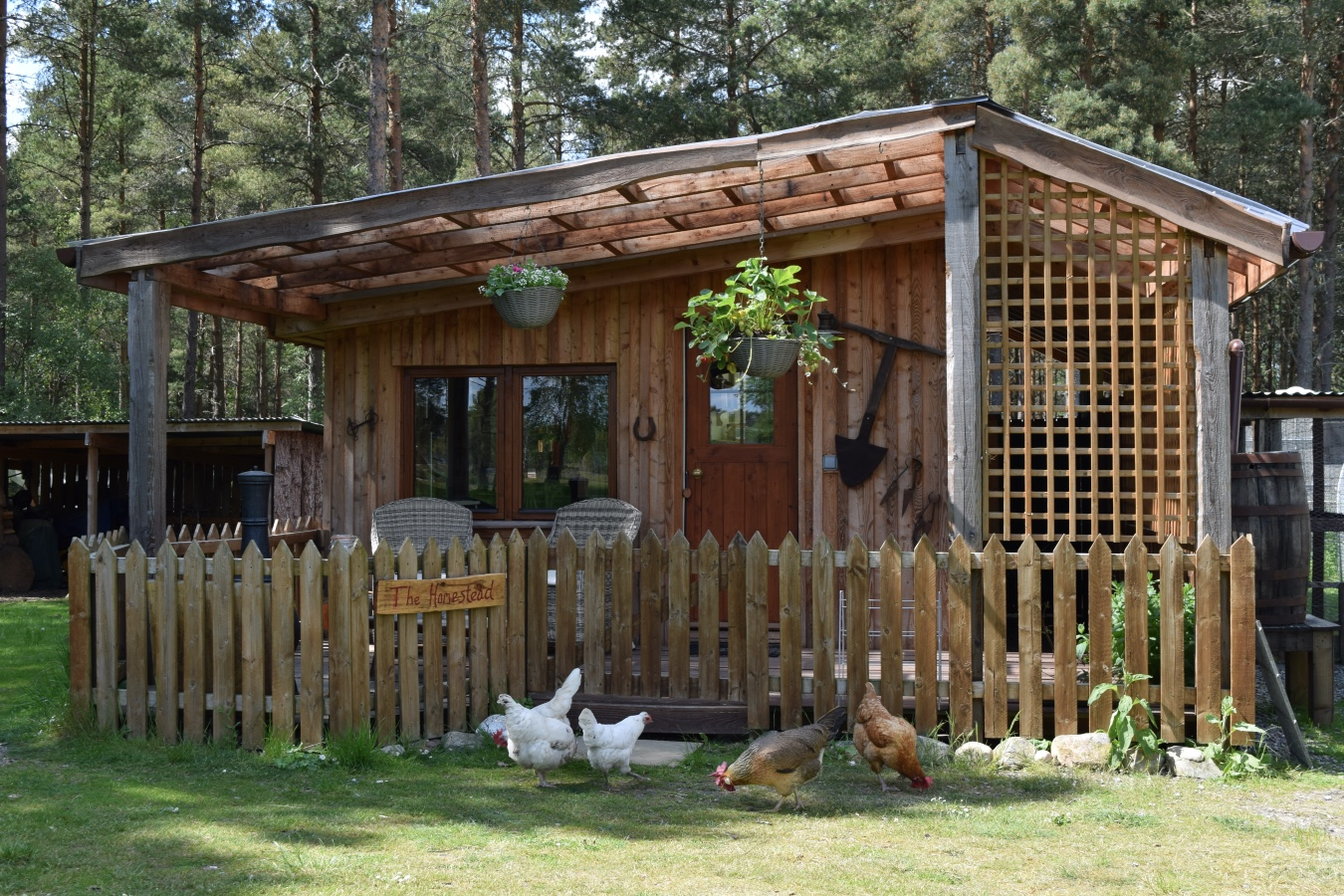 The Homestead eco lodge, off grid hut, cairngorms National Park, Scotland