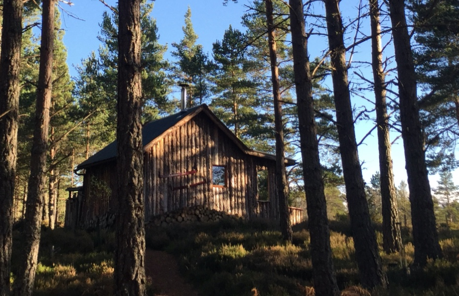 The Woodmans Eco Hut approach, Off Grid Wooden Lodge, Eco Cabin, Cairngorms National Park, Scotland